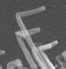 Nanotech Advance Makes Carbon Nanotubes More Useful