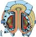 Researchers Devise Improved Controls for Advanced Tokamak Fusion Reactor