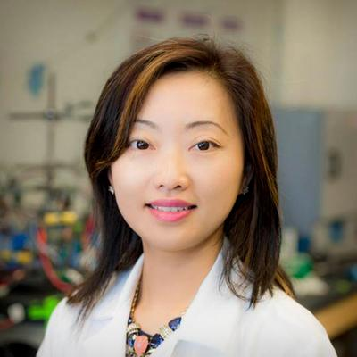 Shirley Meng Named Inaugural Holder of UC San Diego Zable Endowed Chair in Energy Technologies