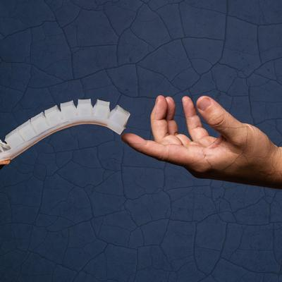 See, Think, Predict: Engineers build a soft robotics perception system inspired by humans