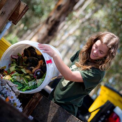 Putting a Dent in Food Waste