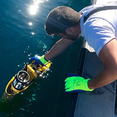 UC San Diego Scientists Awarded Nearly $5 Million to Study Triggers of Deadly, Toxic Algal Blooms