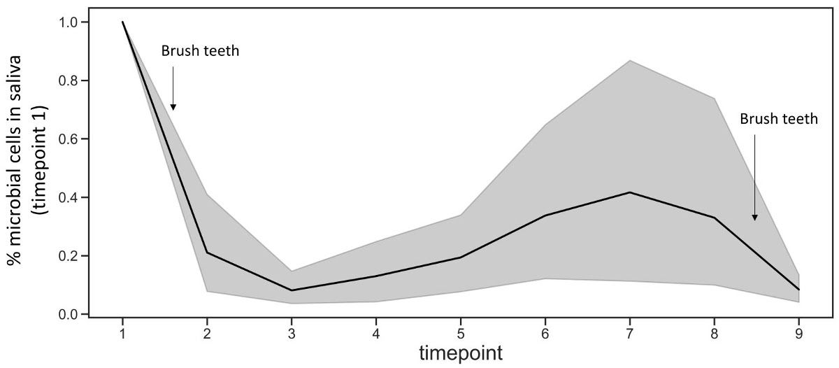 Delving into Drool's Droves of Data: Quantifying the Microbial Load in Human Saliva